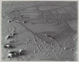 Dust Breeding, 1920, printed ca. 1967 Man Ray (American, 1890–1976) האבק של דושאמפ